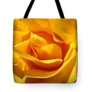 Rose Flower Orange Yellow Roses 1 Golden Sunlit Rose Baslee Troutman Tote Bag