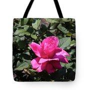 Rose In Flower Bed Tote Bag