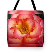 Rose In Reflection Tote Bag