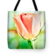 Rose In Window Tote Bag
