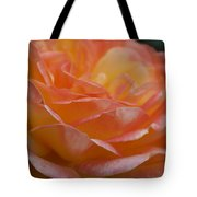 Rose In Yellow And Pink I Tote Bag