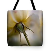 Rose Nuances Tote Bag