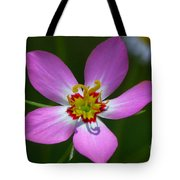 Rose Of Plymouth Tote Bag