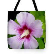 Rose Of Sharon Close Up Tote Bag