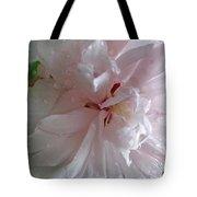 Rose Of Sharon In The Rain Tote Bag