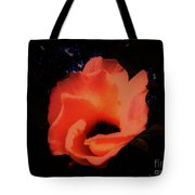 Rose Of Sharon Orange On Black Tote Bag