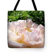Rose Pink Sunlit Rose Flower Art Prints Baslee Troutman Tote Bag
