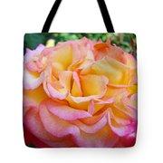 Rose Pink Yellow Rose Flower 2 Rose Garden Giclee Prints Baslee Troutman Tote Bag