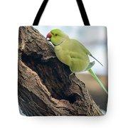 Rose-ringed Parakeet 03 Tote Bag