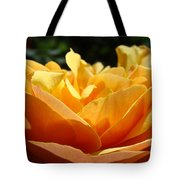 Rose Sunlit Orange Rose Garden 7 Rose Giclee Art Prints Baslee Troutman Tote Bag