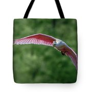 Roseate Spoonbill In Flight 2 Tote Bag