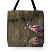 Roseate Spoonbill In Morning Light Tote Bag