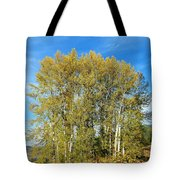 Rosehips And Cottonwoods Tote Bag