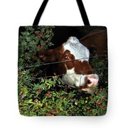 Rosehips For Dessert Tote Bag