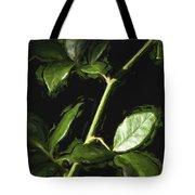 Roseless Stem Tote Bag