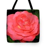 Roses 3 Tote Bag
