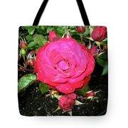 Roses 5 Tote Bag