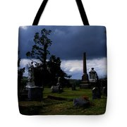 Roses After The Storm Tote Bag