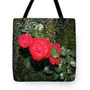 Roses Among Tote Bag by Cynthia Marcopulos
