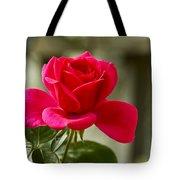 Red Rose Wall Art Print Tote Bag