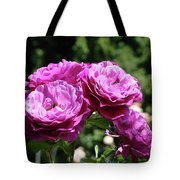Roses Art Rose Garden Pink Purple Floral Prints Baslee Troutman Tote Bag