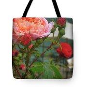 Roses Everywhere Tote Bag
