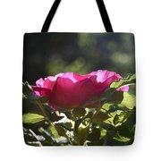 Rose's Illumination Tote Bag