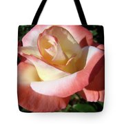 Roses Pink Creamy White Rose Garden 5 Fine Art Prints Baslee Troutman Tote Bag