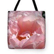 Roses Pink Rose Flower 2 Rose Garden Art Baslee Troutman Collection Tote Bag