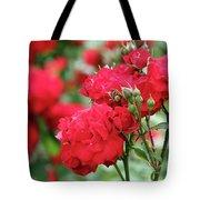 Roses Spring Scene Tote Bag