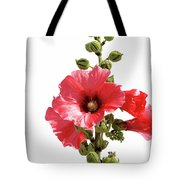 Roses Tremieres Tote Bag