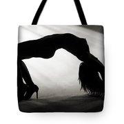 Rosie Nude Fine Art Print In Sensual Sexy 4645.01 Tote Bag