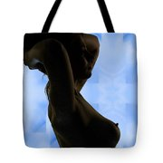 Rosie Nude Fine Art Print In Sensual Sexy Color 4693.02 Tote Bag