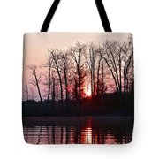 Rosy Sunshine Tote Bag