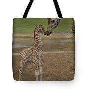 Rothschild Giraffe Giraffa Tote Bag