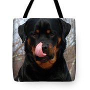 Rottweiler Missed A Spot Tote Bag