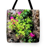 Rough Beauty Tote Bag