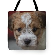 Rough Coat Jrt Pup Tote Bag