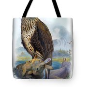 Rough Legged Buzzard Hawk Antique Bird Print The Birds Of Great Britain Tote Bag