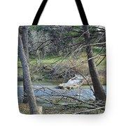Rough River At Times  Tote Bag