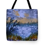 Rough Sunrise At Orange Creek Tote Bag