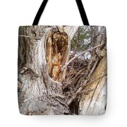 Rough Tree Tote Bag