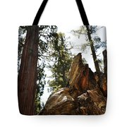 Round Meadow Giant Sequoia Tote Bag