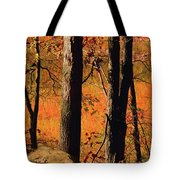 Round Valley State Park 3 Tote Bag