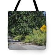 Route 66  End Of The Road Tote Bag