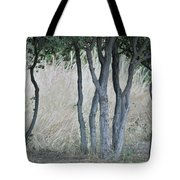 Row Of Trees Tote Bag