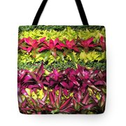 Rows Of Bromeliads Tote Bag