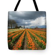 Rows Of Colorful Tulips At Festival Tote Bag