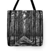 Rows Of Pines Vertical Tote Bag by Tommy Patterson