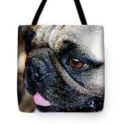 Roxy The Pug Tote Bag